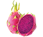 dragonfruit_xsm